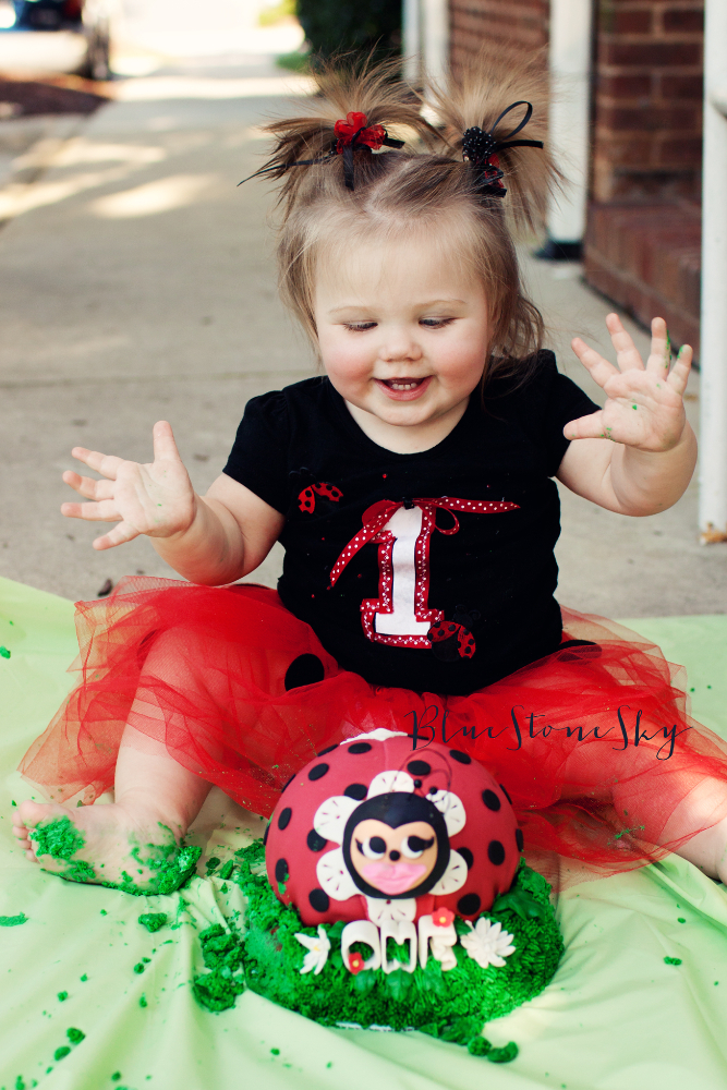 Huntersville Baby Photography